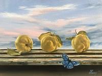 Айва и бабочка