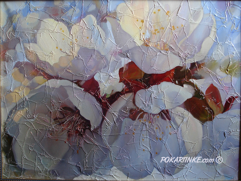 Абрикосовый цвет - картинная галерея PoKartinke.com