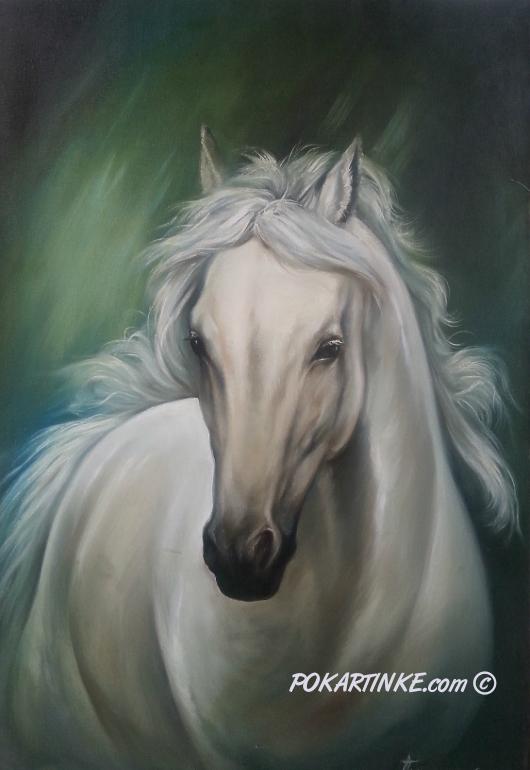 Белая лошадка - картинная галерея PoKartinke.com