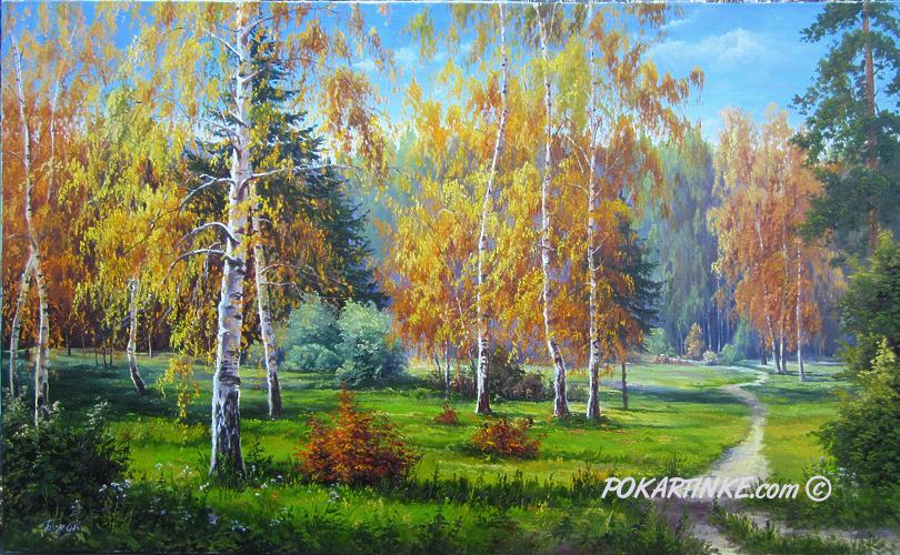 Березы пожелтели. - картинная галерея PoKartinke.com