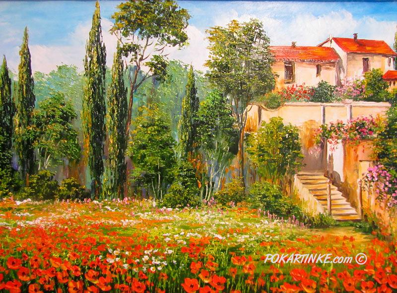 Цветение маков - картинная галерея PoKartinke.com