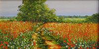 Дорога в поле из маков