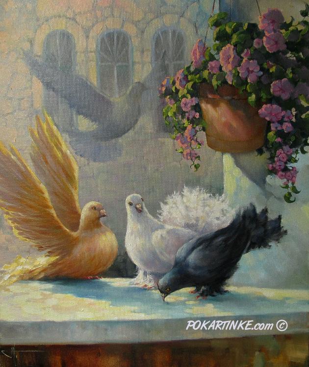 Голуби - картинная галерея PoKartinke.com