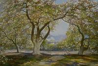 Яблони весной