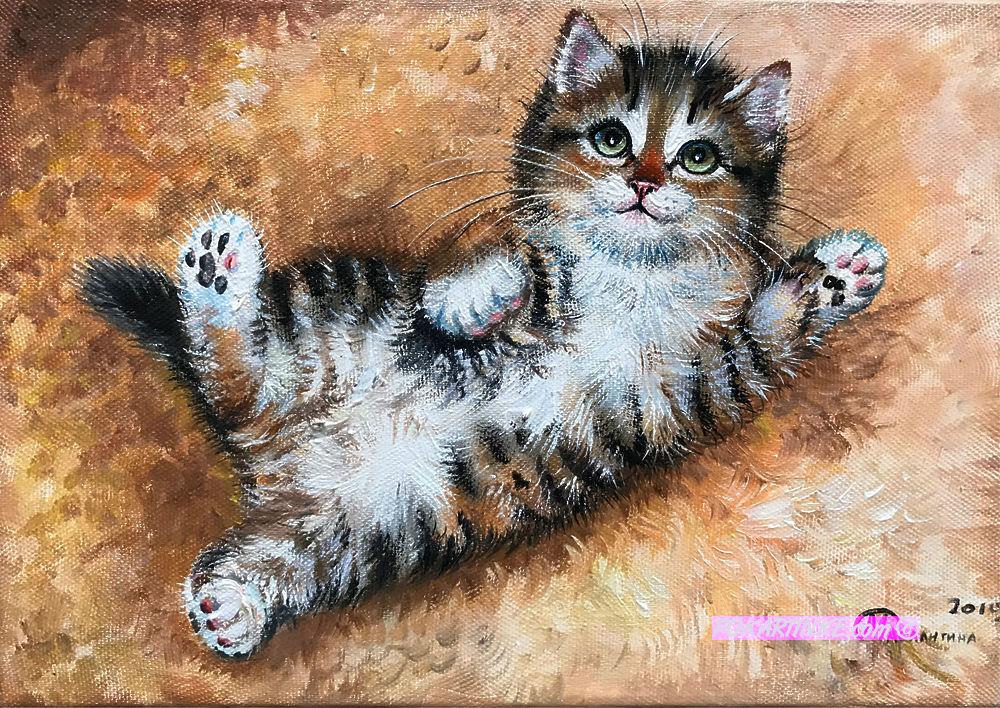 Котик - картинная галерея PoKartinke.com