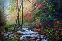 Лесной поток
