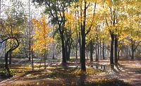 Осенью после дождя