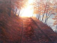 Осенняя дорога в листьях