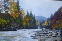 Бурная река в Карпатах