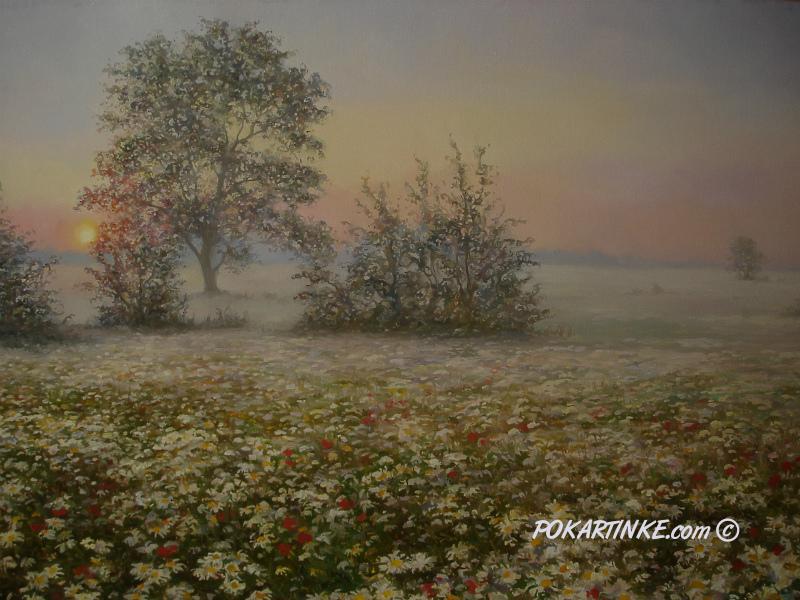 Ромашковий ранок - картинная галерея PoKartinke.com