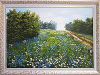 Ромашково-васильковое поле