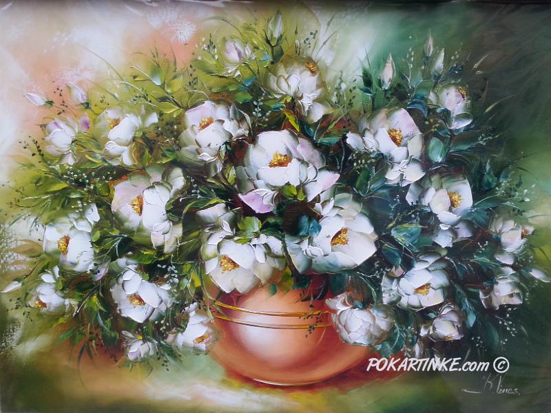 Белоснежный шиповник - картинная галерея PoKartinke.com