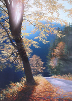 Теплый путь