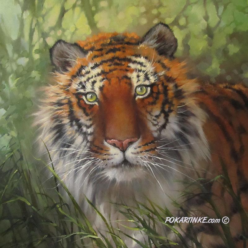 Взгляд тигра - картинная галерея PoKartinke.com