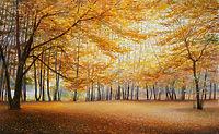 Тихой осенью