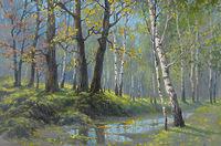В лесу после дождя