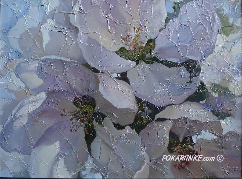 Вишневый цвет - картинная галерея PoKartinke.com